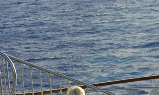 HI 001 cruise ship - 09