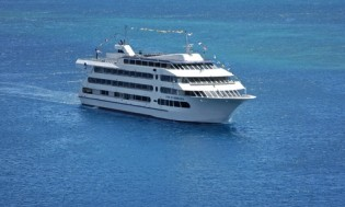 HI 001 cruise ship - 32