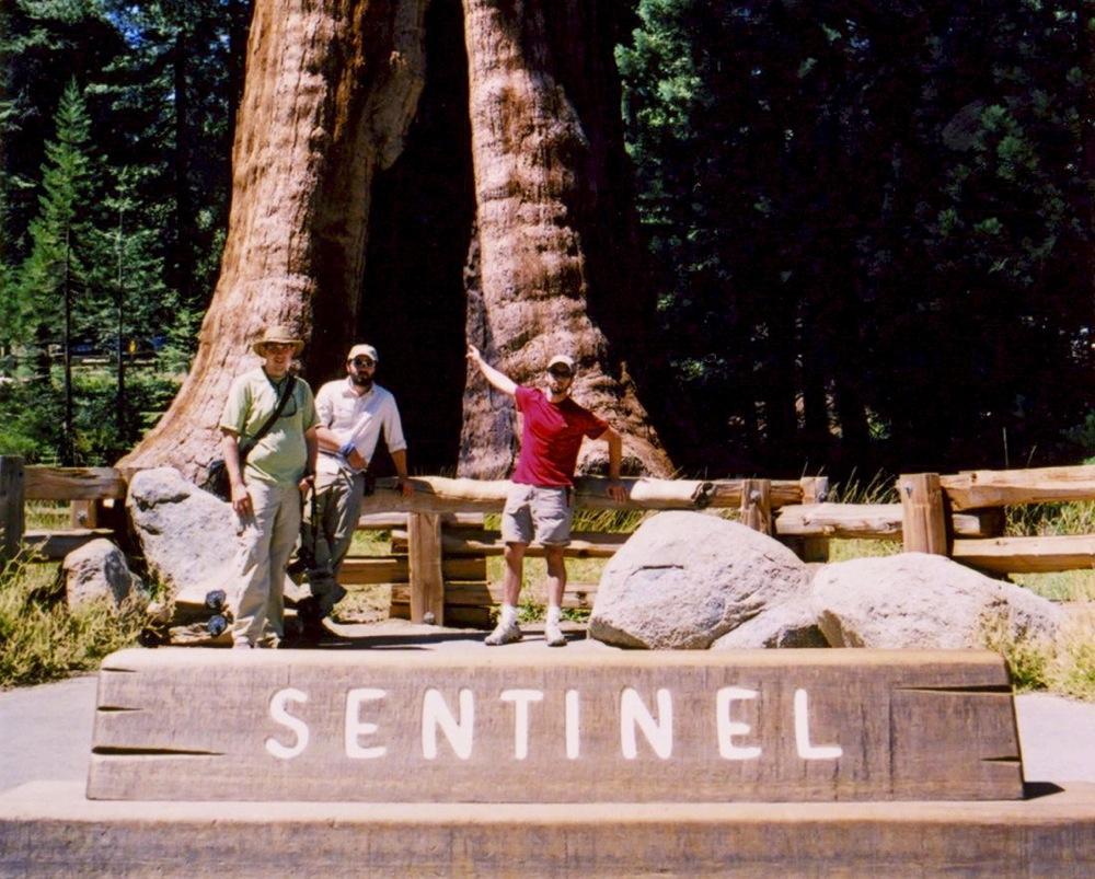 Sequoia_2006_07