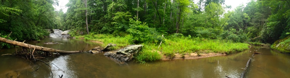 Panther Creek and Falls Panoramic
