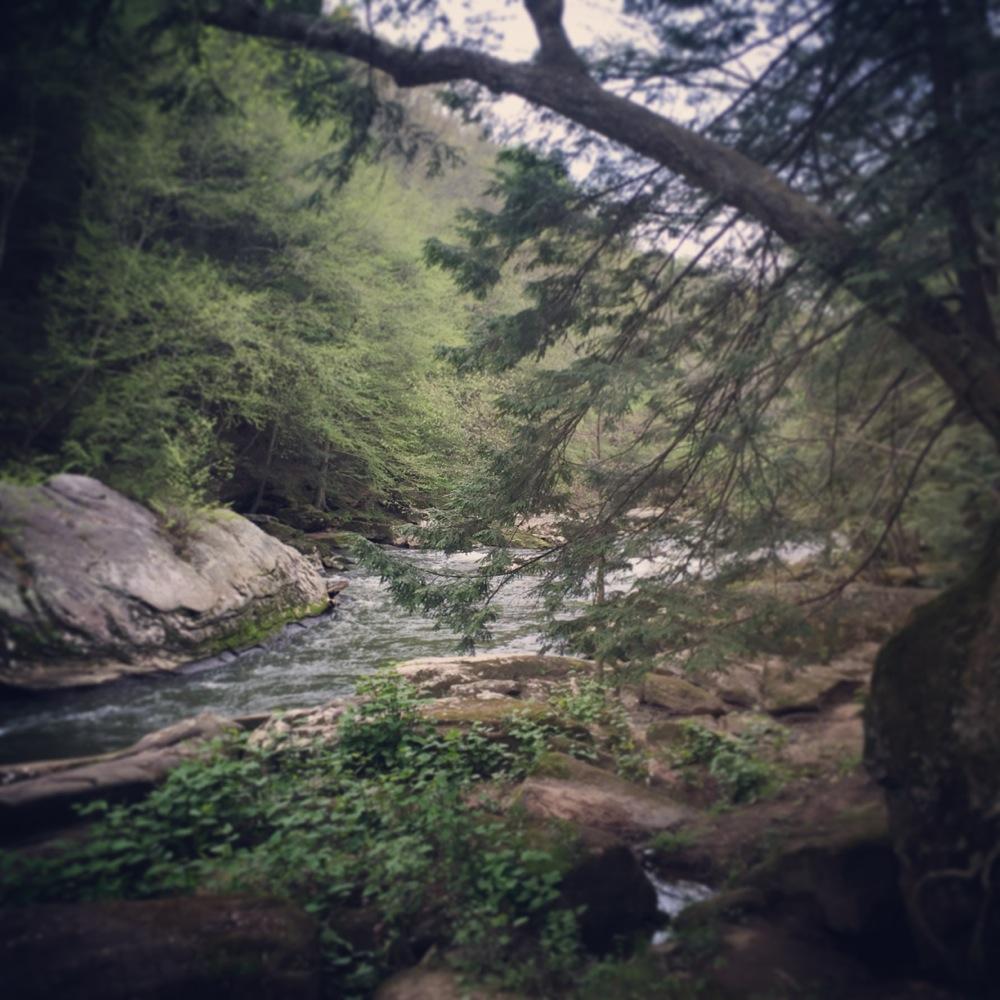 McConnell_sierra_webedit18